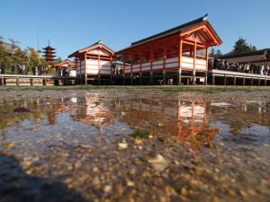 厳島神社…