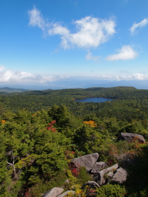 高見石から見下ろす白駒池…